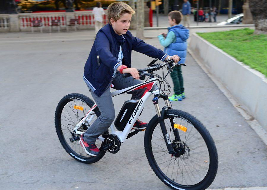 Marktaandeel elektrische fiets bijna 50 procent
