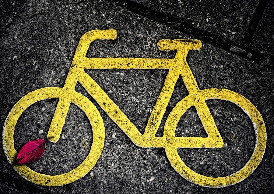 Europese studie bestudeerde gedrag bij fietsers uit zeven verschillende steden